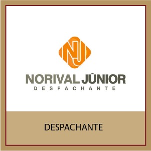 Norival Júnior Despachante