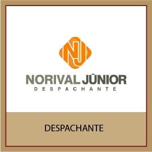 Norival Júnior Despachante